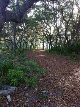 Oak Trail Way